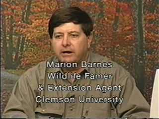 Biology and Management of Mourning Dove - Marion Barnes